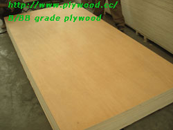 B/BB plywood
