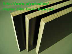 Poplar Film Faced Plywood