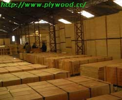 plywood-workshop.jpg