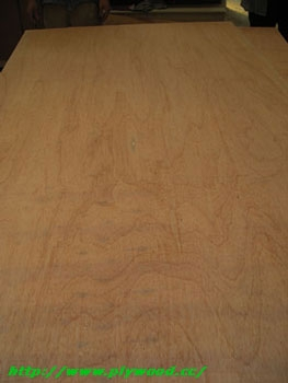 Hardwood Packing Plywood