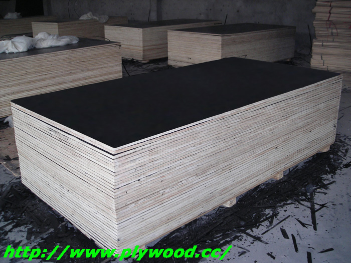 Film Faced Plywood To Be Packed