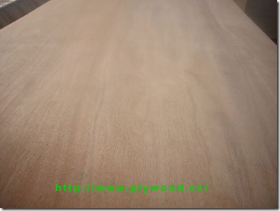 Plywood Veneers (Face)