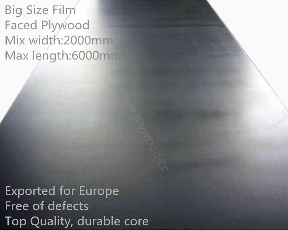Big Size Film Faced Plywood / Large Size Film Faced Plywood