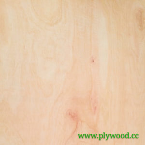 Types of Plywood According to JPIC/JAS Standards
