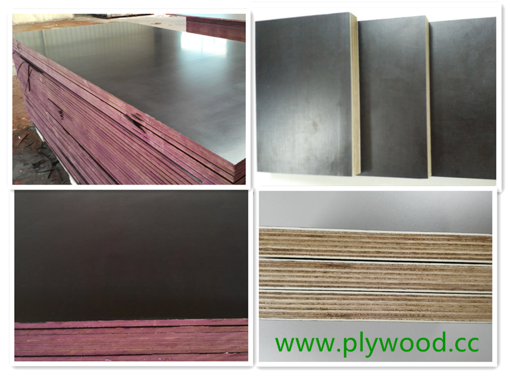 Film Faced Plywood Marine Plywood Shuttering Plywood